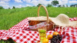 Лето — время для пикников!